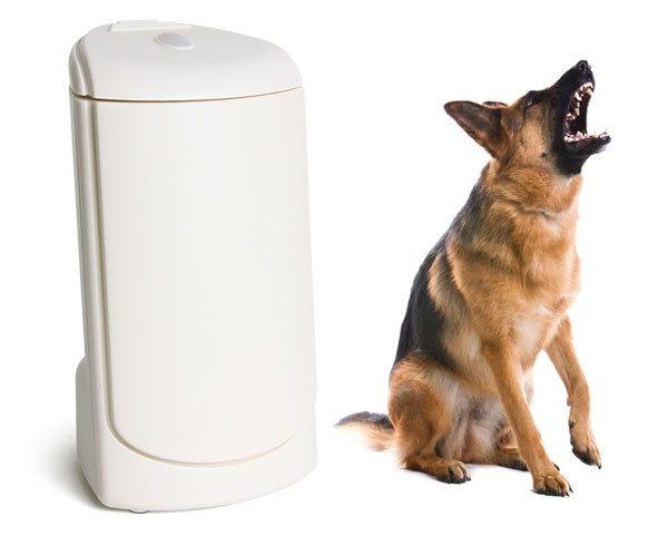 elektr. wachhund